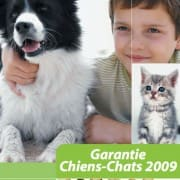 april-chiens-chats